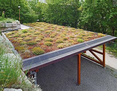 botanischer trend per mausklick. Black Bedroom Furniture Sets. Home Design Ideas