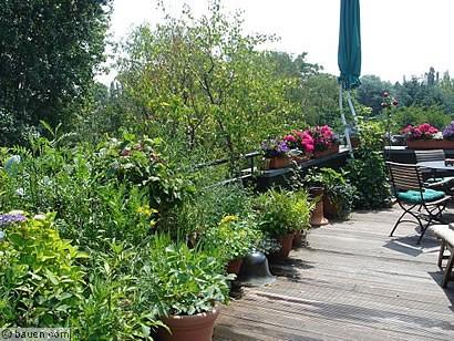 naschen auf dem balkon bauencom With französischer balkon mit große sträucher für den garten