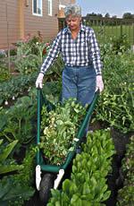 Praktischer Erntehelfer: Mit Wheel Easy kann das Gemüse schnell vom Beet ins Haus gefahren werden. Bis zu 175 Kilogramm auf einmal. - Foto: Allsop