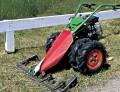 Grüner Teppich - Rasenpflege
